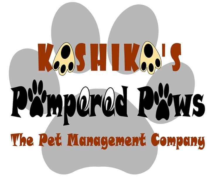 Kashikas pampered paws